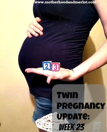 23 weeks pregnant twins