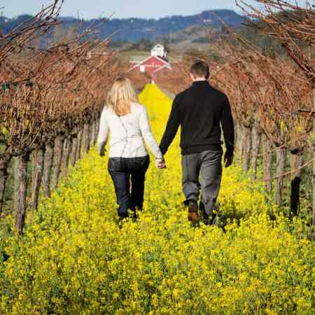 romantic getaway in Napa