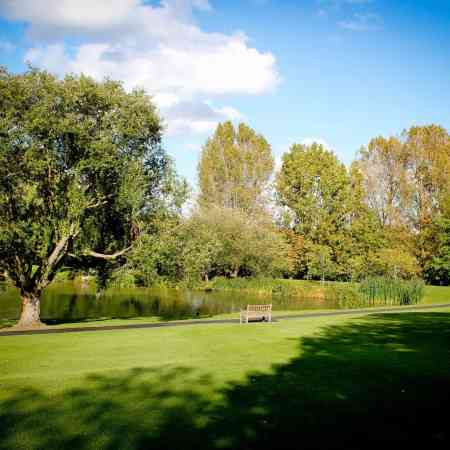 things to do in Surrey