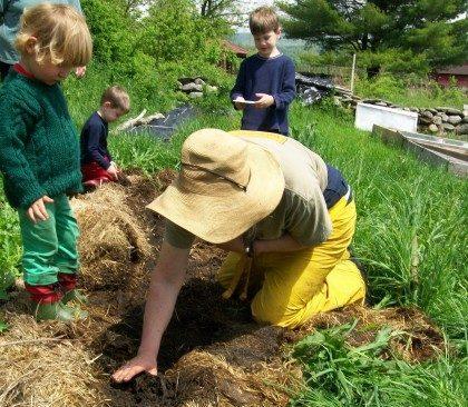 soil prep for planting seeds