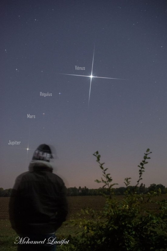 Man in winter garb standing in a field under a very bright starlike object in the sky.