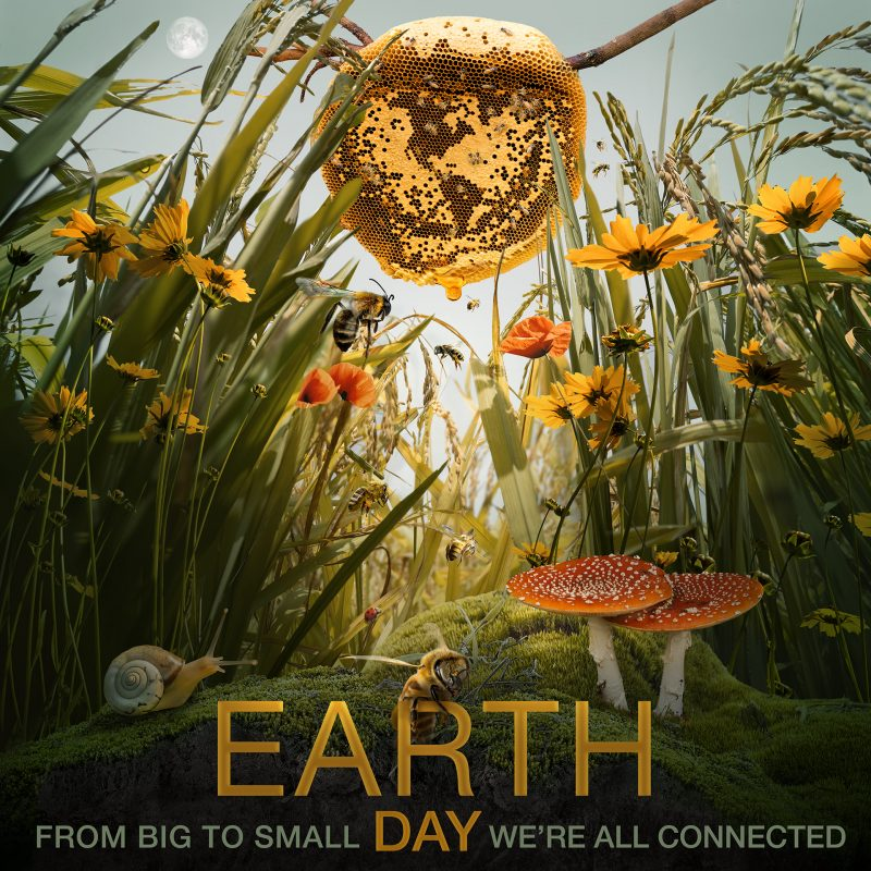 Colorful yellow-hued poster for Earth Day with small critters and flowers, and a large honey comb in the center.