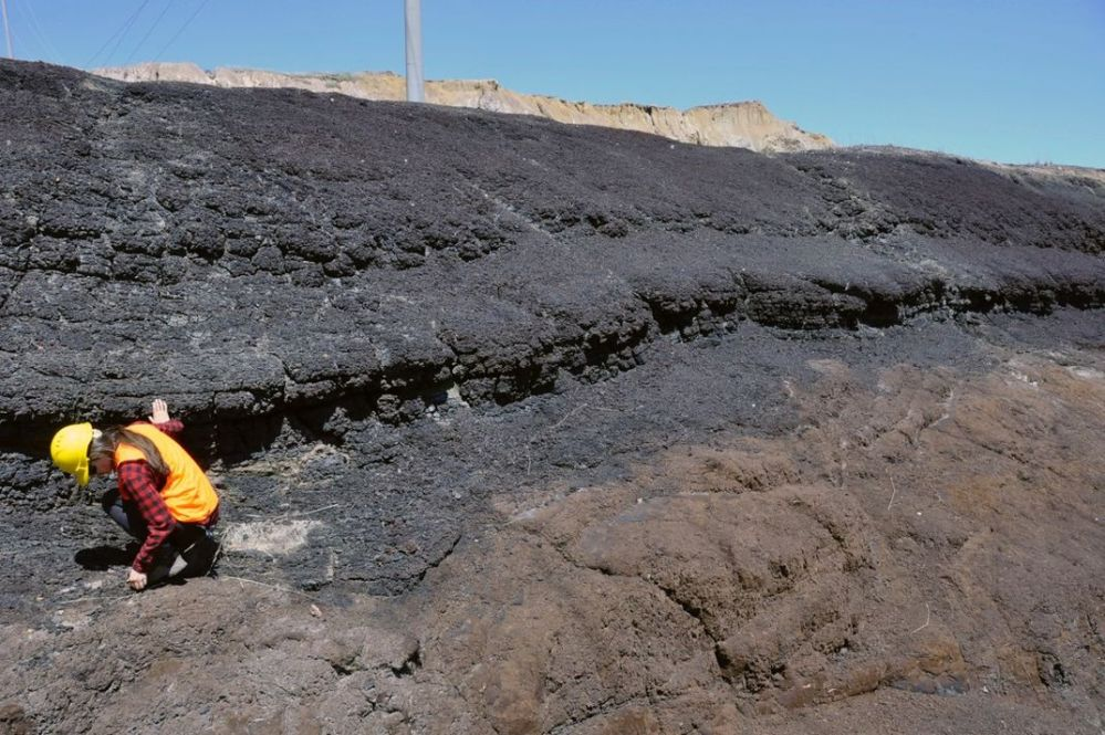 Person bending down to pick up samples at a coal reserve