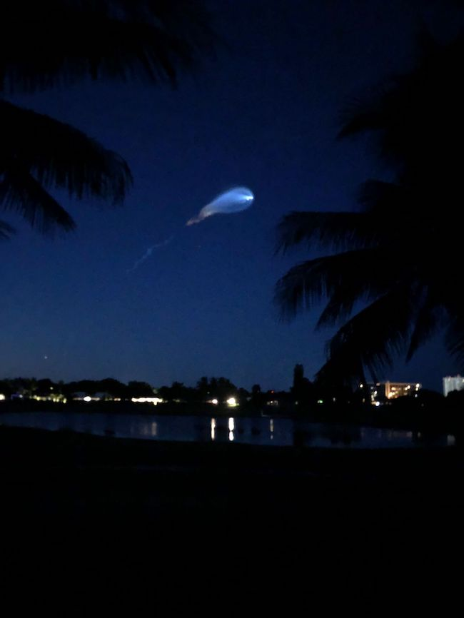 A white blur trails across a dark blue night sky with silhouettes of palm trees in the foreground.