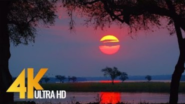 Ildlife 4K Demo Ultrahd Video – Grcija