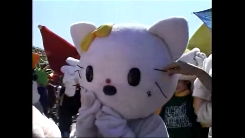 Fake Hello Kitty