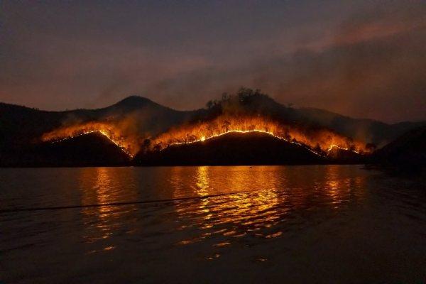 Brennende Waldflächen in Australien