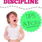Good reminders. Disciplining a toddler can be tricky