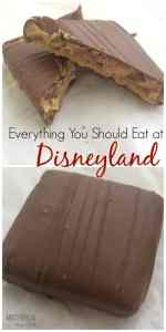 All the best Foods at Disneyland!