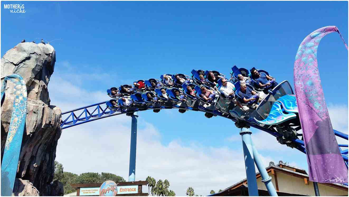 Manta Roller Coaster- Sea world