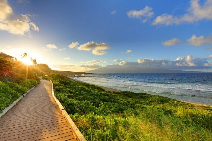 Maui vs Kauai: the pros and cons to both islands and how to choose which one you want to visit