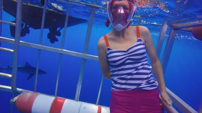 North Shore Oahu: Swimming With Sharks