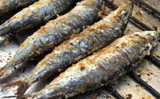 bbq sardine sardinha assada portugal