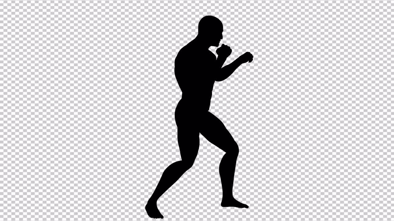 mma fighting stance stock