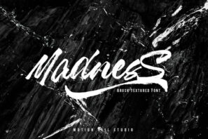 Madness - Textured Brush Font