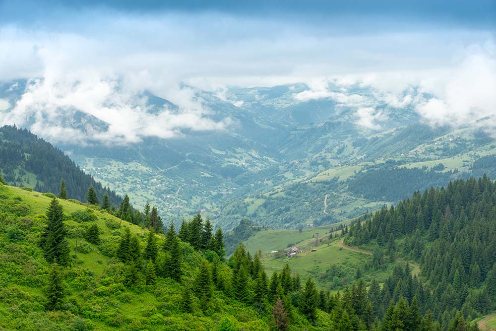 Green Route: From Düzce Lowlands to Artvin Mountains