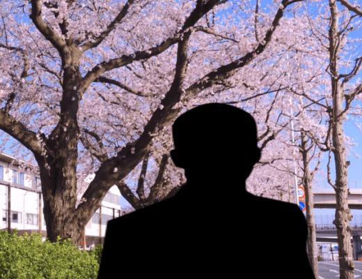 桜並木と男