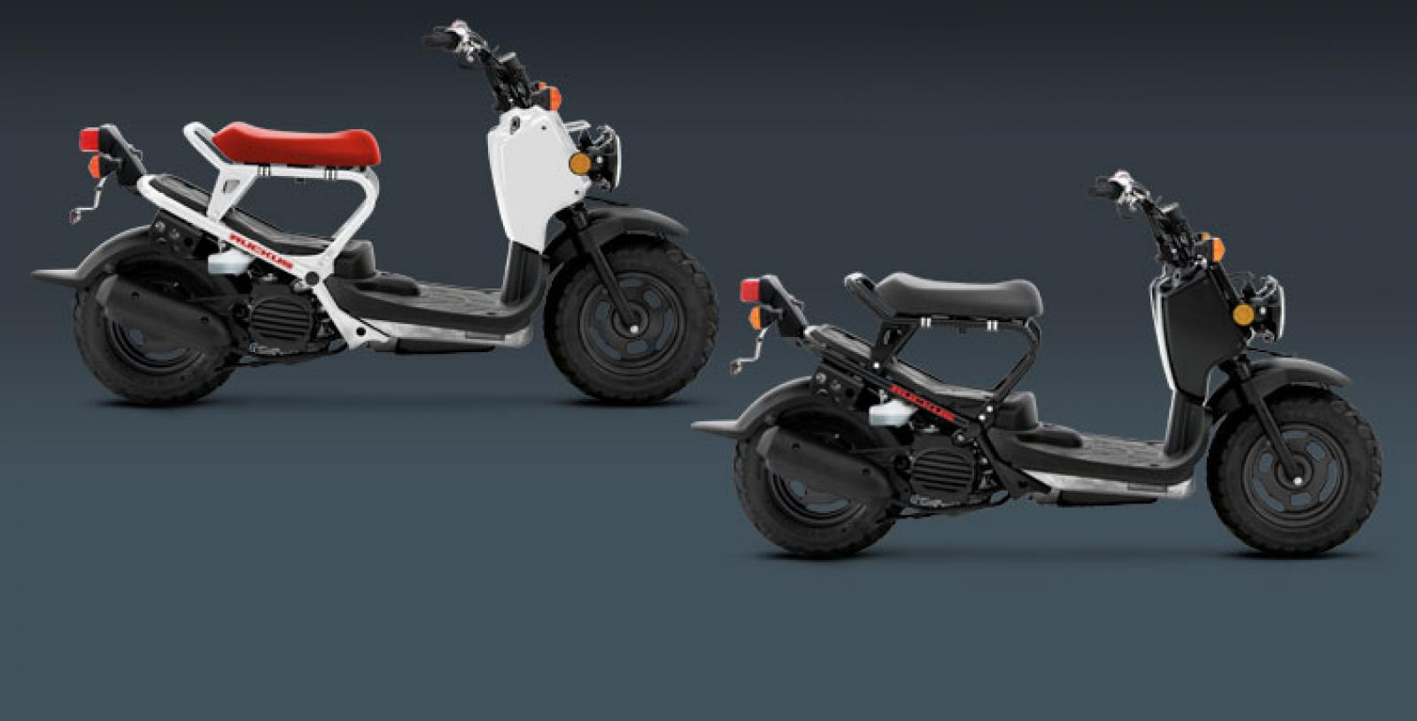 hight resolution of honda ruckus gallery
