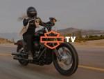 Harley-Davidson TV : Amenez votre passion pour la moto dans votre salon