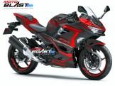Kawasaki Ninja 250R 2018- RED CARBON