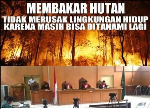 Bakar-Hutan-itu-tidak-merusak-lingkungan-hidup-5