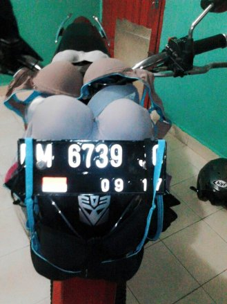 kegunaan motor lainnya