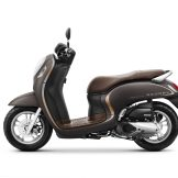AHM SCOOPY - VARIANT Stylish Brown FINAL copy