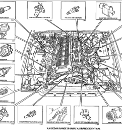 jaguar xj8 engine diagram simple wiring diagram rh 44 berlinsky airline de black jaguar diagram jaguar [ 1401 x 673 Pixel ]