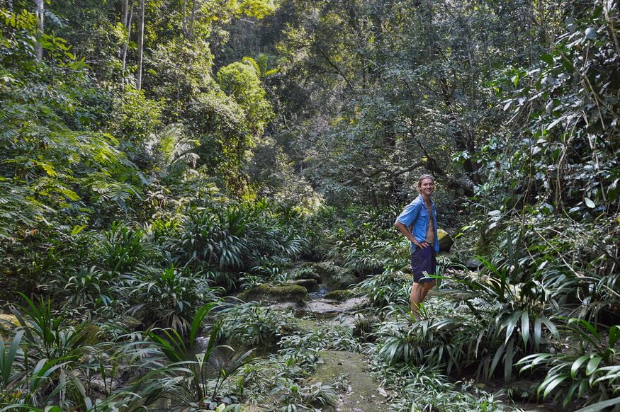 Мужчина в джунглях