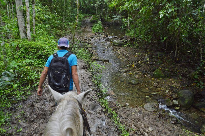 тур в национальный парк Мачалилья