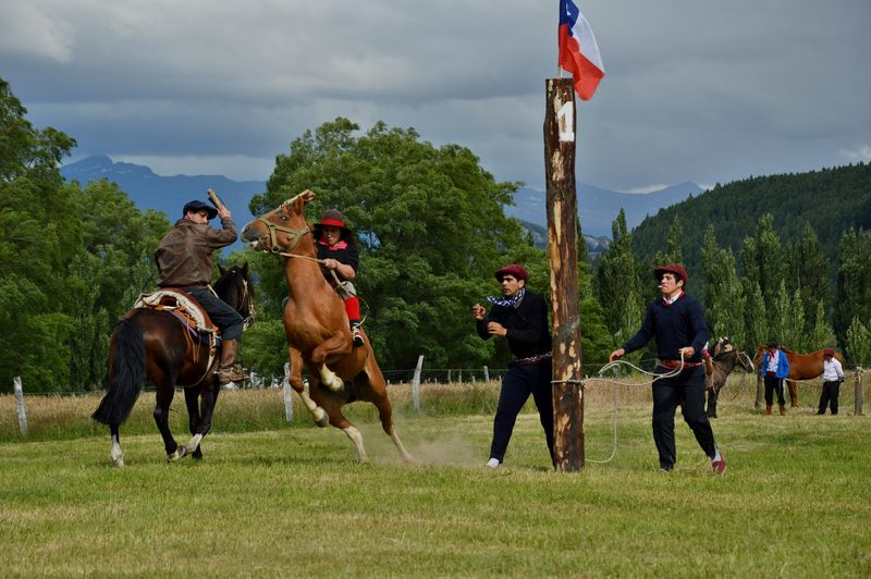 Хинетеада конный спорт Чили
