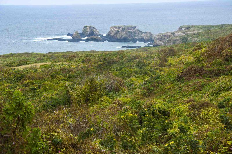Морской национальный парк Мачалилья в Пуэрто Лопес