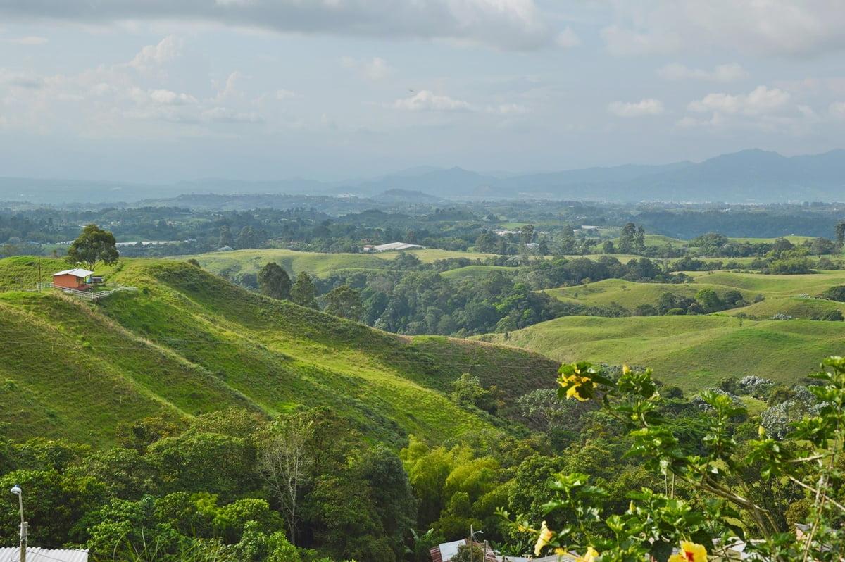 Эхе кафетеро - регион в Колумбии, где выращивают колумбийский кофе