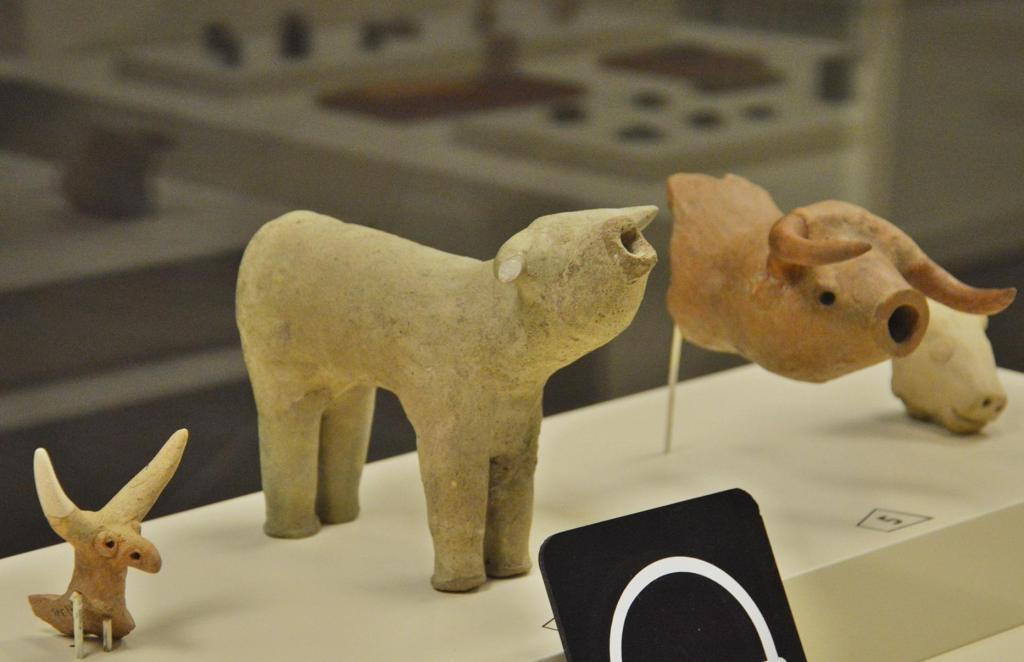 история Турции - музей