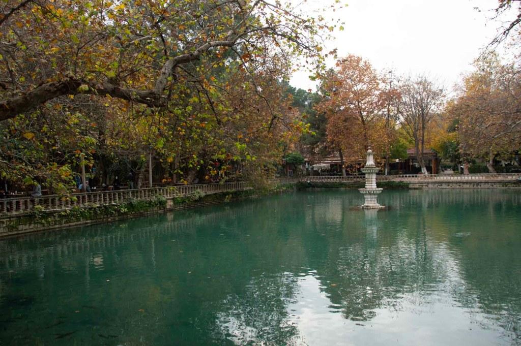 Зеленой озеро с фонтаном