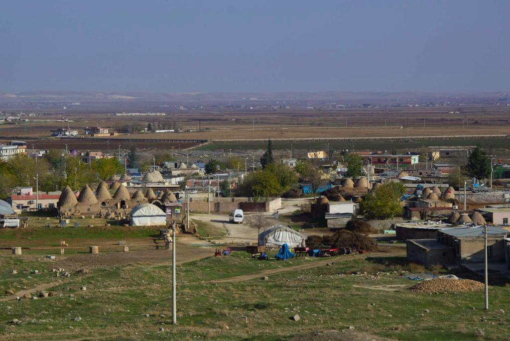 Вид на поселок с холма