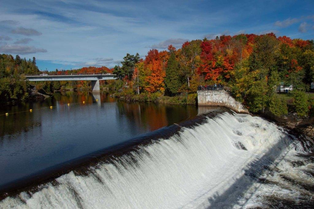Лес осенью и водоем