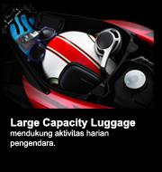largeluggage2