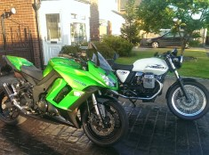 Green or White?