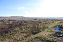 Derbyshire (7)