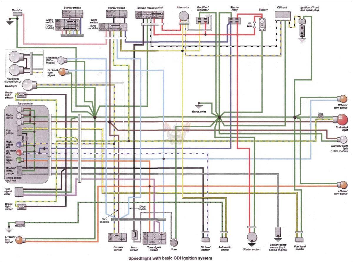 Savage Xl Engine Diagram 100cc