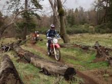 riding single track