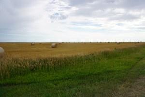 Kansas vista