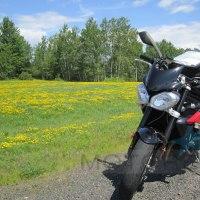Ride Lake Superior Vicki Gray