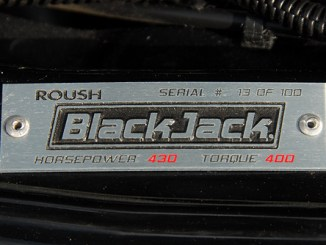09 Black Jack Mustang