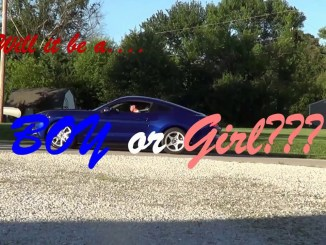 2015 mustang gt burnout baby reveal