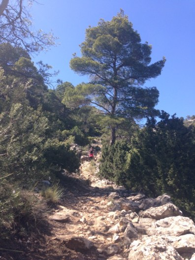 Steep paths going down, Sierra Espuña