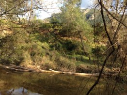 The view from our pitch at Camping Chopera, Coto Rios