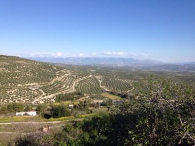 Looking East from Ubeda