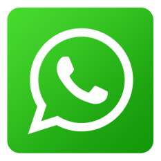 WhatsApp motoristaOnline